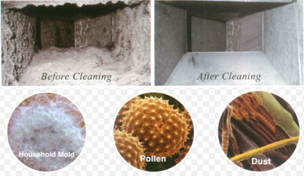 Valtierra Carpet Cleaning
